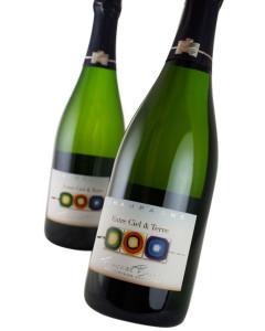Champagne Francoise Bedel Cuvee Entre Ciel & Terre