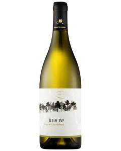 Odem Forest Viognier/Chardonnay 2016