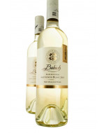 Babich Marlborough Sauvignon Blanc 2020